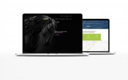 Signum_website-02